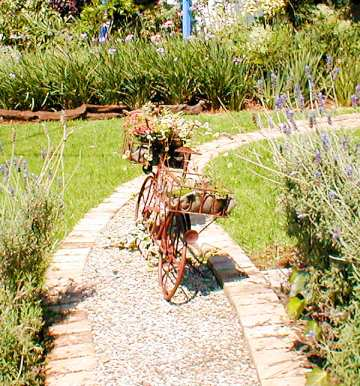 Waterkloof Pretoria garden design